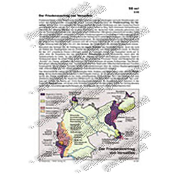 Der Friedensvertrag von Versailles