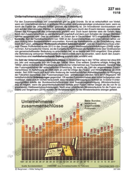 Unternehmenszusammenschlüsse