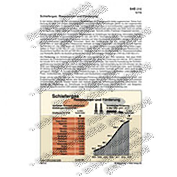 Schiefergas: Ressourcen und Förderung