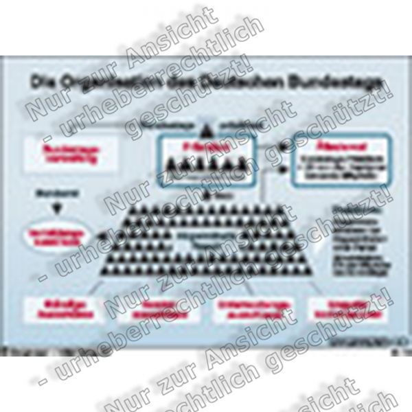 Die Organisation des Deutschen Bundestags